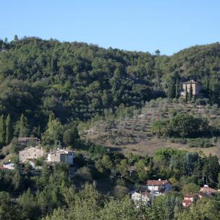 Der Weiler Carpini