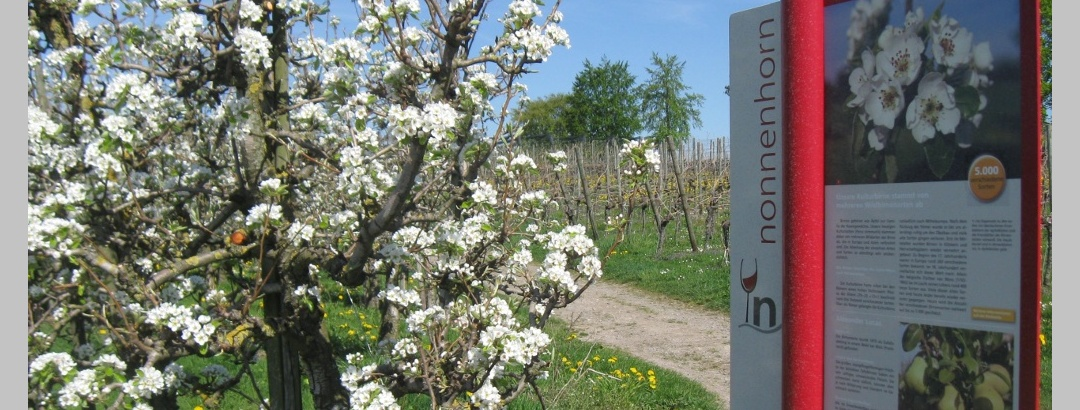 Im Frühling auf dem Genießerweg