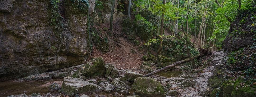 Az Alsó-Cuha-szurdok legvadabb része