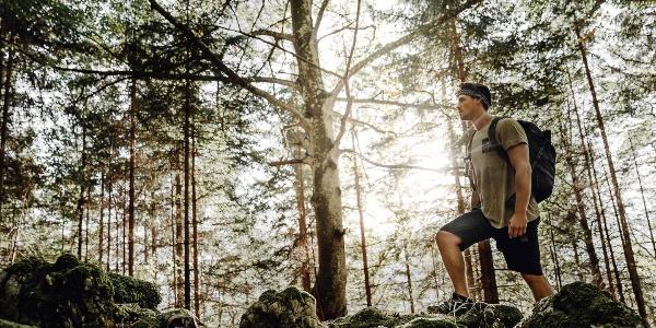 Luchs Trail 01-8