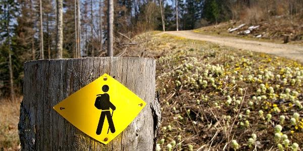 Der Weg zum Tour de Moron ist gut markiert.