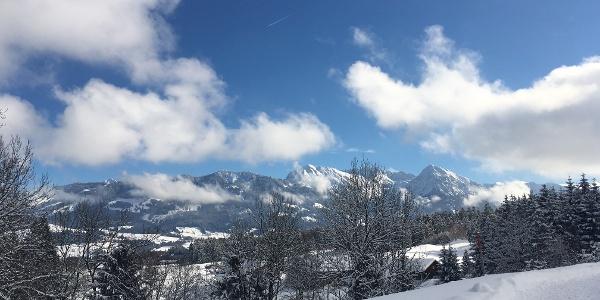 Ausblick Allgäuer Alpen