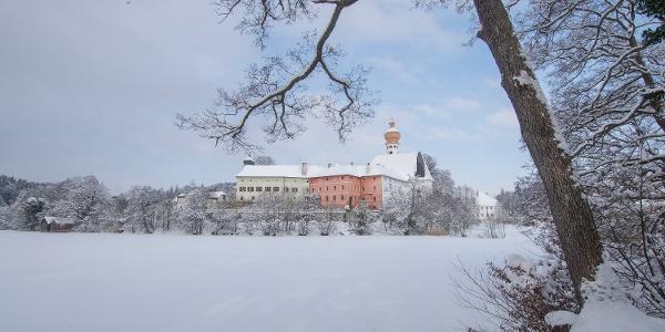 Höglwörther See im Winter
