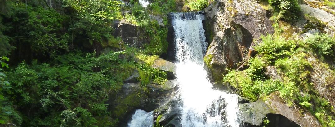 Triberger Wasserfälle mit Bergseebrücke