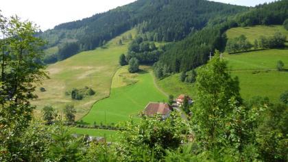 Schöne Aussicht vom Heimatkundepfad in Oberprechtal