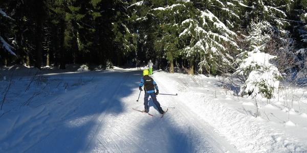 Lyžování na běžkách v lese Geyerscher Wald