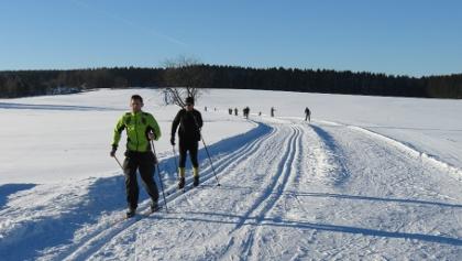 Běh na lyžích u Geyeru