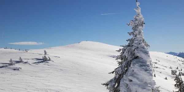 der Flache Gipfel des Fellhorn