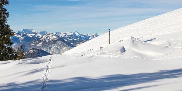 Ederalm im schneereichen Winter 2019