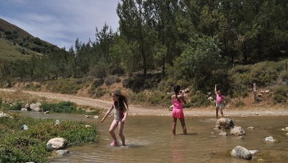 ילדים רוחצים בנחל דישון