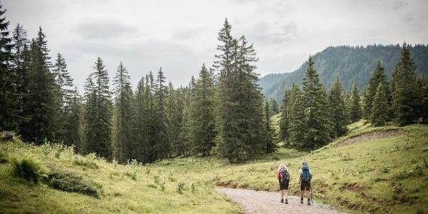 Ersten Meter von Mödlingerhütte nach Johnsbach