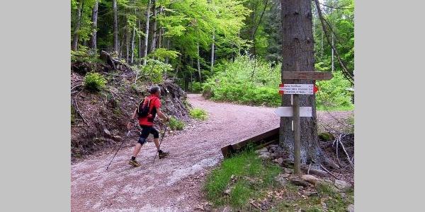 Il Giro del Monte Pincaldo è adatto a chi vuole praticare il Nordic Walking