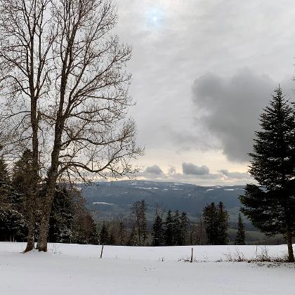 Haute Borne - Blick Richtung Süden - Montagne de Moutier
