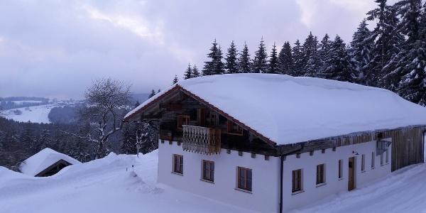Prellerhaus im Winter 2019