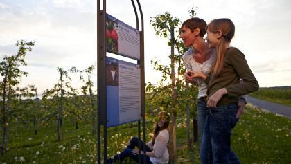 Familie auf dem Apfelweg