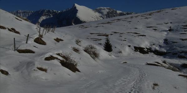 Along the mule trail beneath Mt. Mrzli vrh in the direction of Mt. Matajur