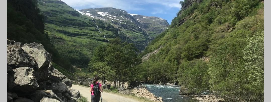 Walking Myrdal to Flam