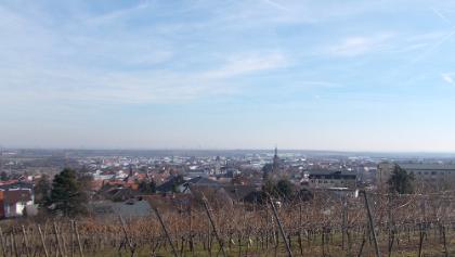 Blick auf Grünstadt