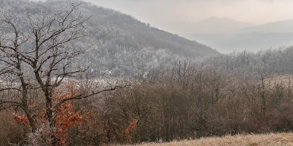 A Sós-hegy a Nagy-Sas-hegy oldalcsúcsáról, a távolban a Nagy-Galla