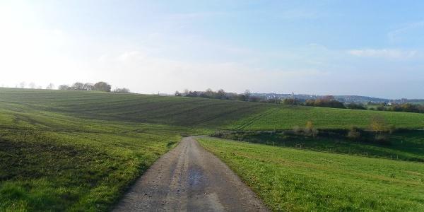 Wiesenweg in der Nähe von Monzelfeld