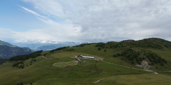 Alp dil Plaun im Sommer