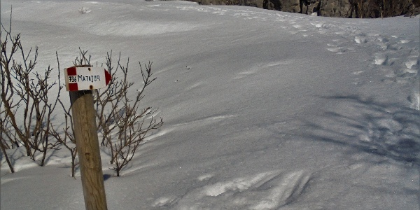 Choose the trail towards the ridge of Mt. Matajur