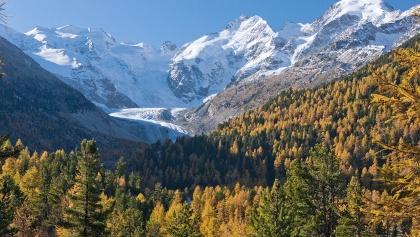 ENGADIN ST. MORITZ:  Goldener Herbst beim Morteratschgletscher
