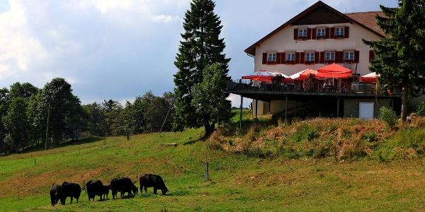 Restaurant Untergrenchenberg.