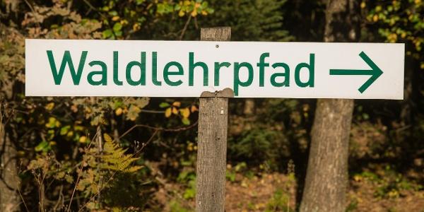 Waldlehrpfad Rodt