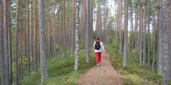 Esker on the Sininen polku trail