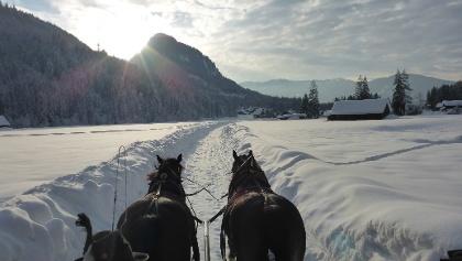 Mit der Pferdekutsche durch die verschneite Winterlandschaft im Dachstein Salzkammergut