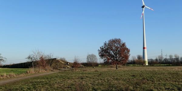 Aussichtspunkt im Stadtrandpark -Neue Wiesen-