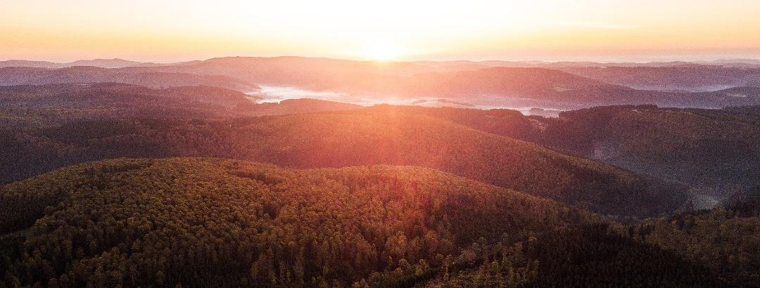 Wald und Wasser zeichnen Siegerland und Wittgenstein aus