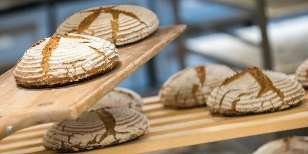 Täglich frisches Bio-Brot im Retter BioGut