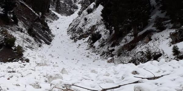Tobel am Ende des Fahrwegs nach der Bergstation Materialseilbahn