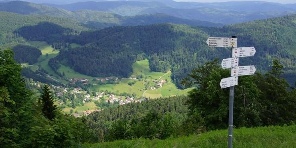 Blick vom Blauen nach Marzell