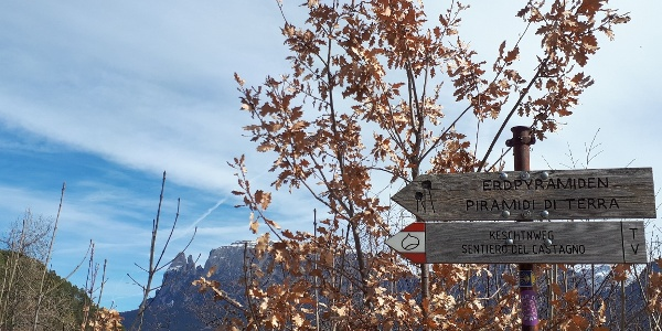 """Die Erdpyramiden, die wir über den bekannten Südtiroler """"Keschtnweg"""" erreichen, sind vom Unterinner Dorfzentrum aus stets bestens ausgeschildert."""