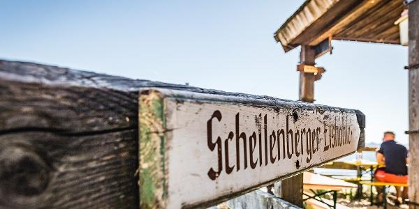 """Die """"Eishöhlen"""" Hütte: Toni Lenz Hütte"""