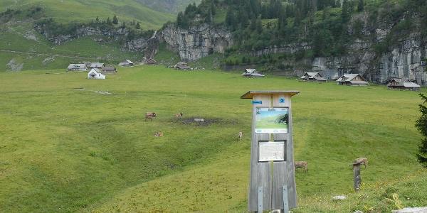 Posten Steinmanndlipfad auf Älggialp