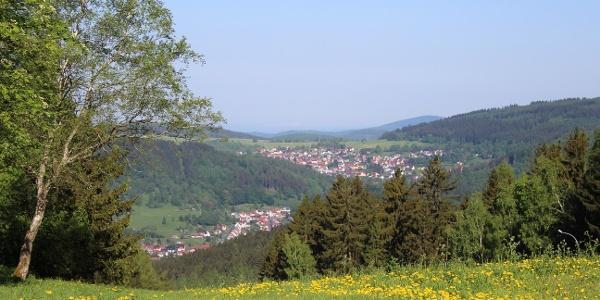 Hure aus Steinbach-Hallenberg