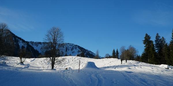 Durch die Schneelandschaft hinauf zum Seelekopf