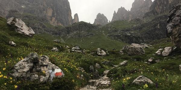Richtung Refugio Pedrotti