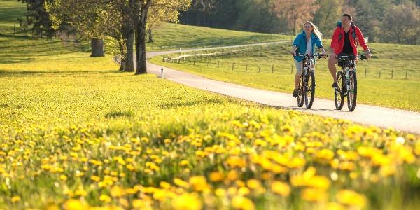 Weizer Almenland Radtour_(c)Bernhard_Bergmann