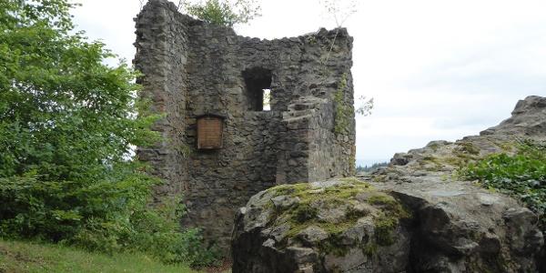 Ruine Schwarzenburg