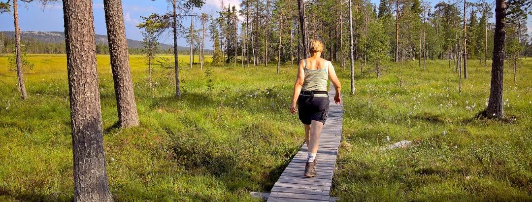 Wanderer im Pyhä-Luosto Nationalpark