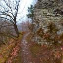Felsbewehrte, wurzelige Steige im Bärensteig