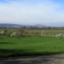 Blick von Eshenbach auf das Voralbgebiet