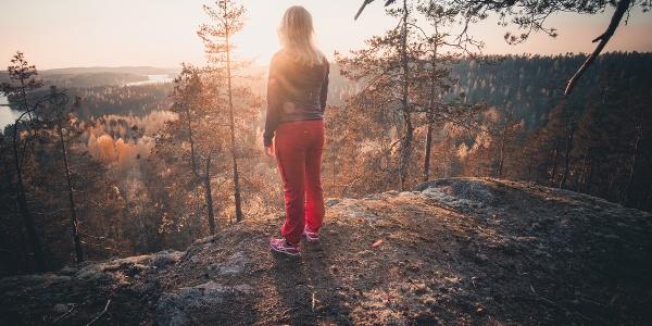 Views in Repovesi National Park