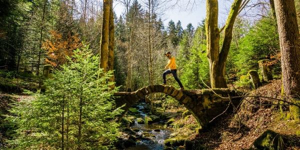 Der Weg ins Schweinbachtal führt über das Steinerne Brückle