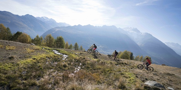 3 mountain bikers with a magnificent view of the Valais mountains